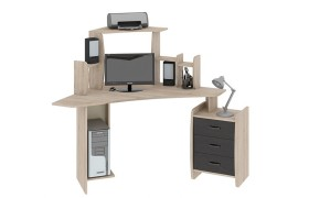 Компьютерный стол Сэн Сэй-2