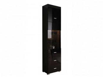 Распашной шкаф Jang в цвете Черный блеск