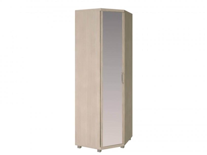 распашной шкаф Шкаф угловой Ирис